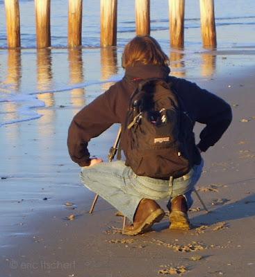 mer,garçon,cadzand,sable