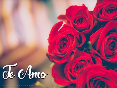 Frases para Cartões de Flores