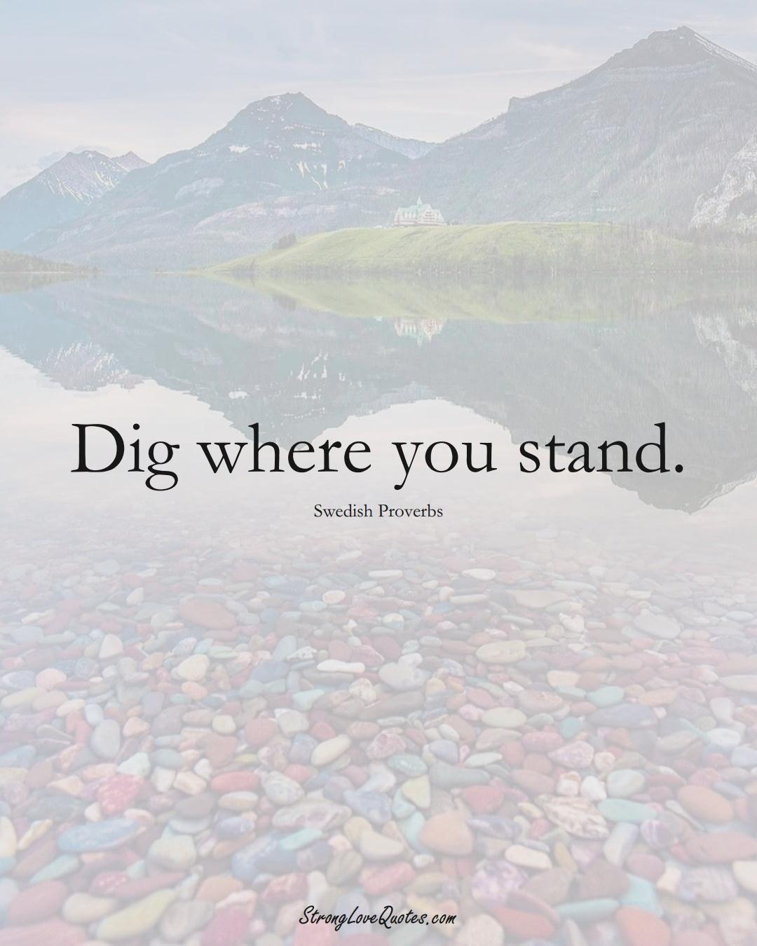 Dig where you stand. (Swedish Sayings);  #EuropeanSayings