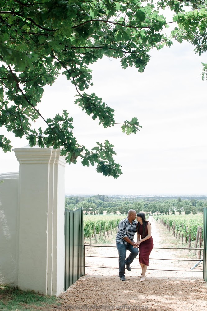 DK Photography CCD_5177 Preview ~ Roxanne & Enslin's Engagement Shoot in Groot Constantia Wine Estate  Cape Town Wedding photographer