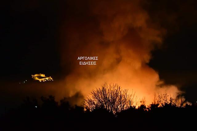Άμεση κινητοποίηση της πυροσβεστικής για φωτιά στη Νέα Κίο Αργολίδας