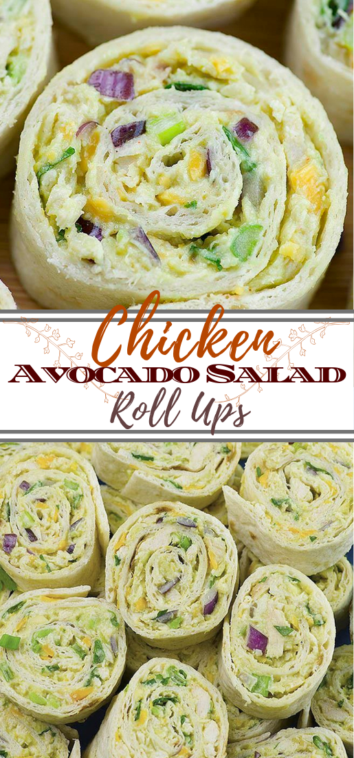 Chicken Avocado Salad Roll Ups #vegan #vegetarian #soup #breakfast #lunch
