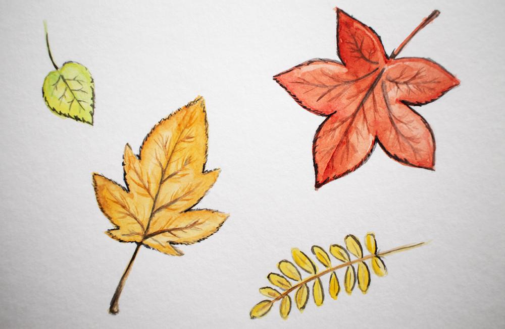 Dibujando experimentando acuarela dibujo otoño