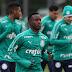 Palmeiras pode vir com surpresa na Copa Libertadores