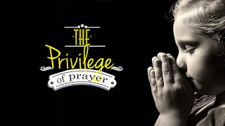 DEVOTIONAL + INSIGHT: The Privilege Of Prayer - ODB, 3 December 2020