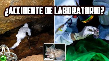 ¿Fue el CORONAVIRUS SARS CoV 2 liberado desde un laboratorio?