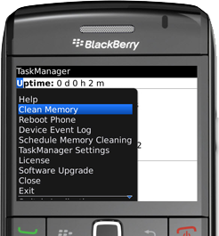 BLACKBERRY CLEANING MEMORY