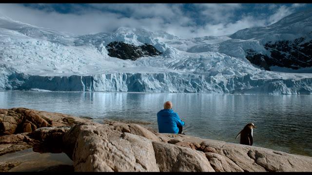 Cena do filme, com uma pessoa ao lado de pinguim observando uma geleira