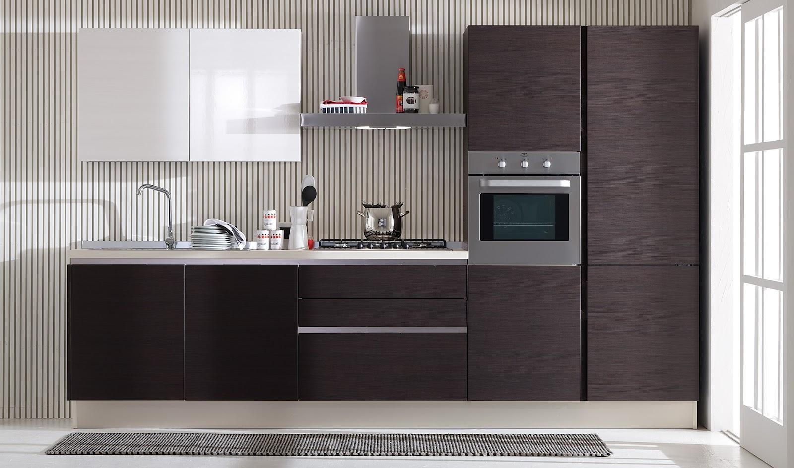 Cocinas lineales la combinaci n de colores cocinas con for Cocina 3 metros