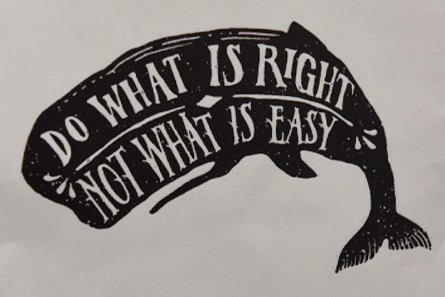 whale, do what is right not what is easy, conservation, little changes