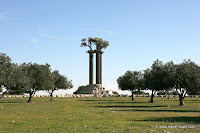 The park of olives