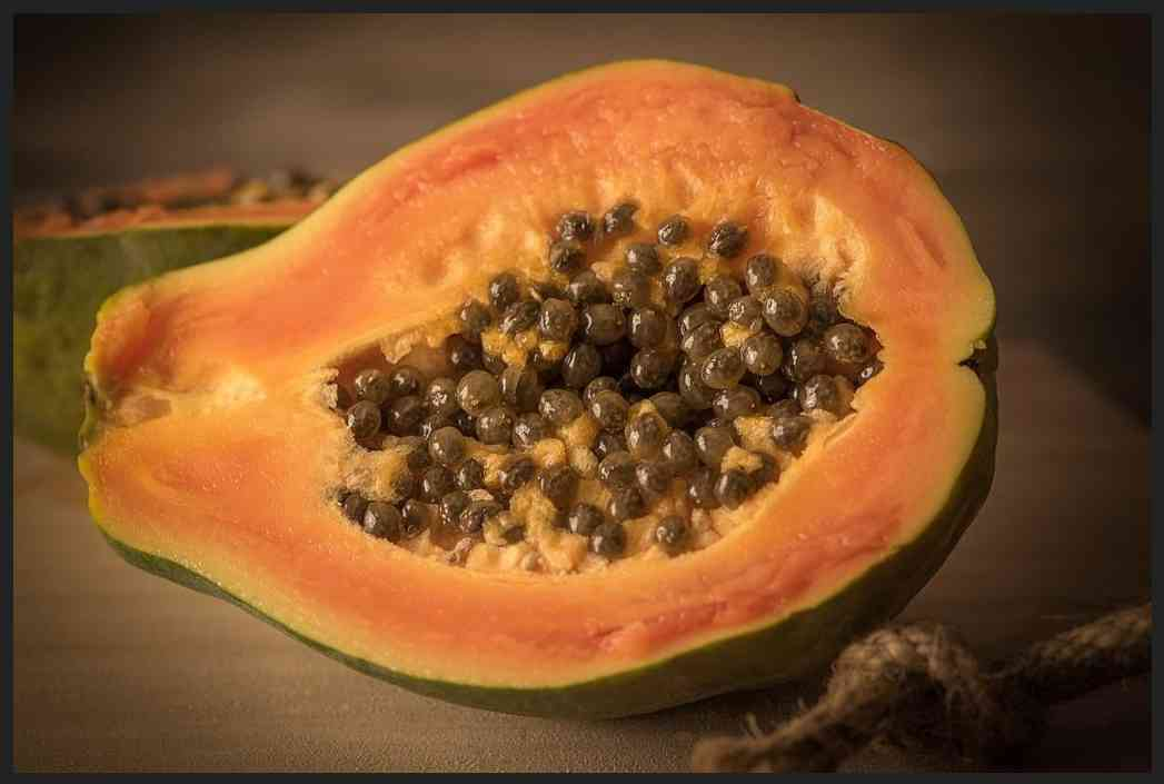 Papaya – Wellbeing good thing about Papaya
