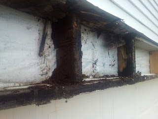 Inside the header above the garage door is all rotten out