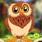 PG Audacious Owl Escape