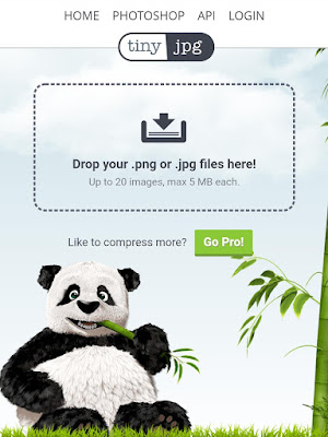 Compress your blog images using TinyJPG