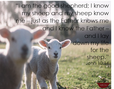 The verse surrounds two lambs.