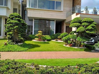 Jasa Tukang Taman Surabaya Desain Taman Gaya Modern
