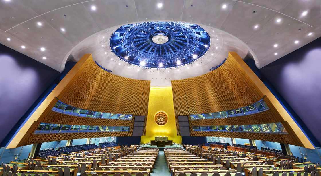 Estructura institucional de la ONU - Derecho Internacional Público