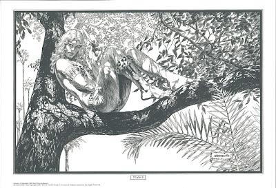 Image result for Ka-Zar brent Anderson portfolio