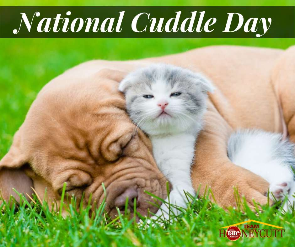 National Cuddle Up Day Wishes Lovely Pics