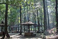 taman hutan raya ir h juanda