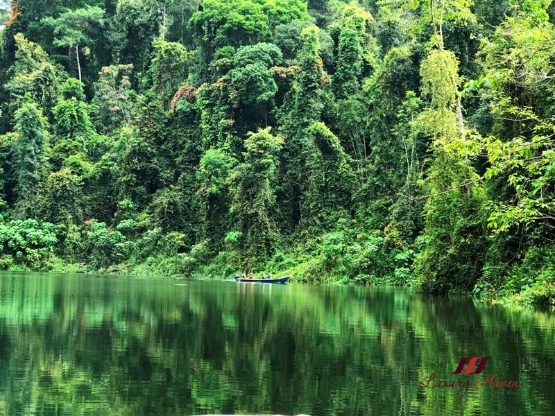 visit perak 2017 royal belum state park rainforest