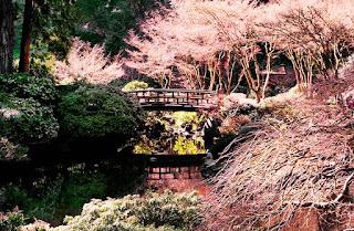 الحديقة اليابانية المذهلة أمريكا japanesegarden11.jpg