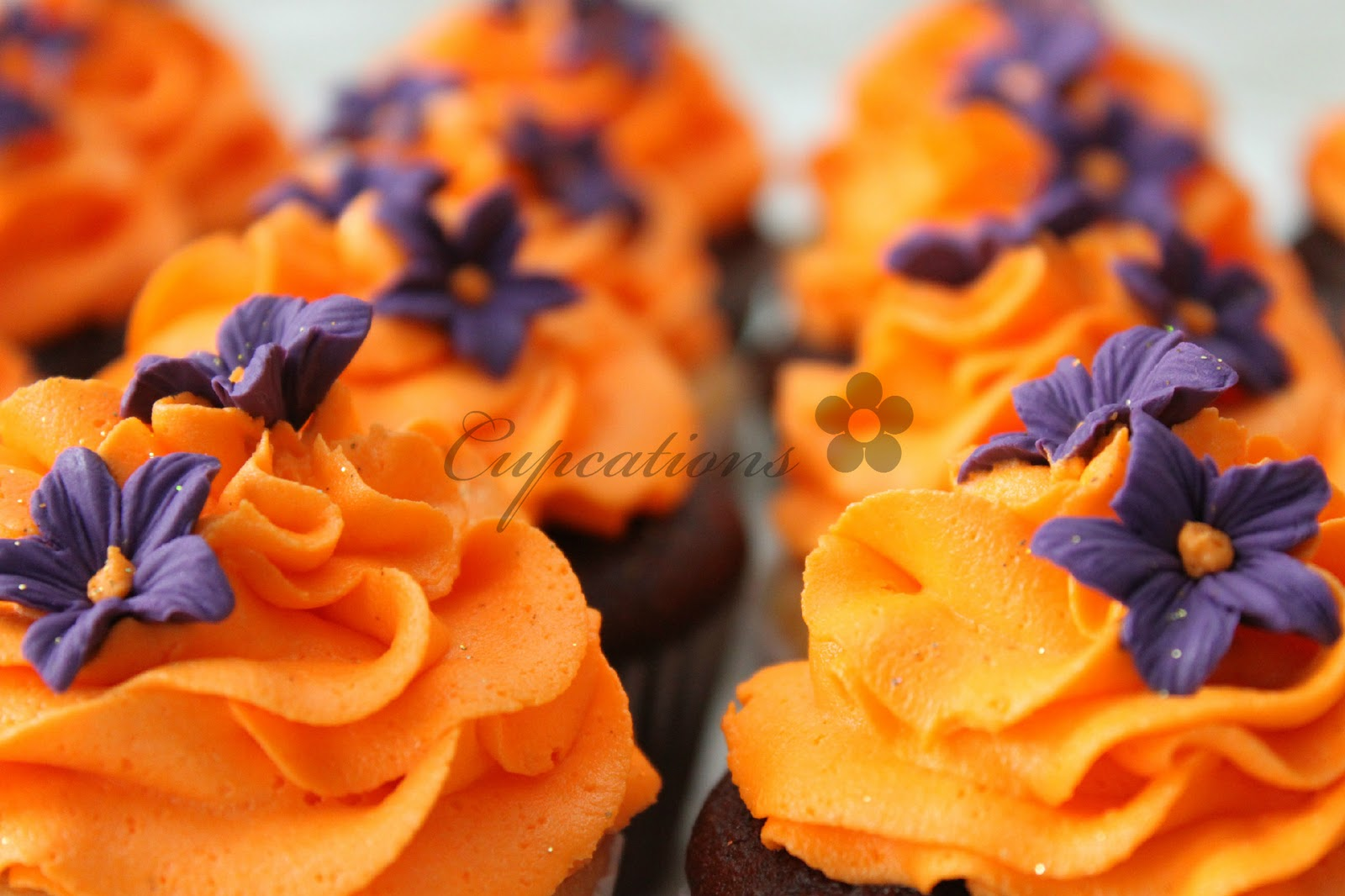 Cupcations  Orange And Purple