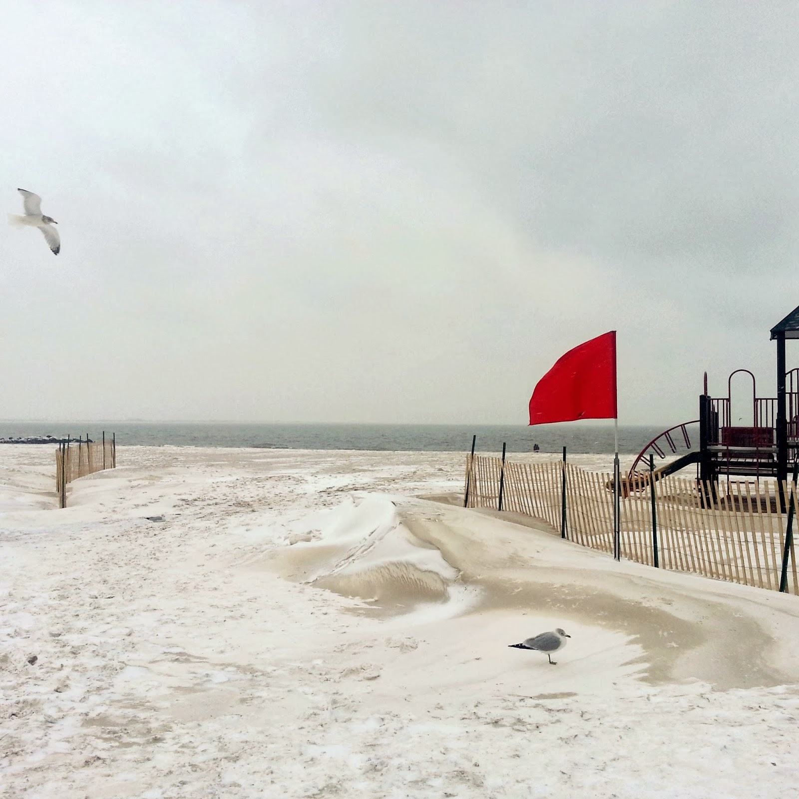 Snow on Brighton Beach, NYC  |  Week 4 on afeathery*nest  |  http://afeatherynest.blogspot.com