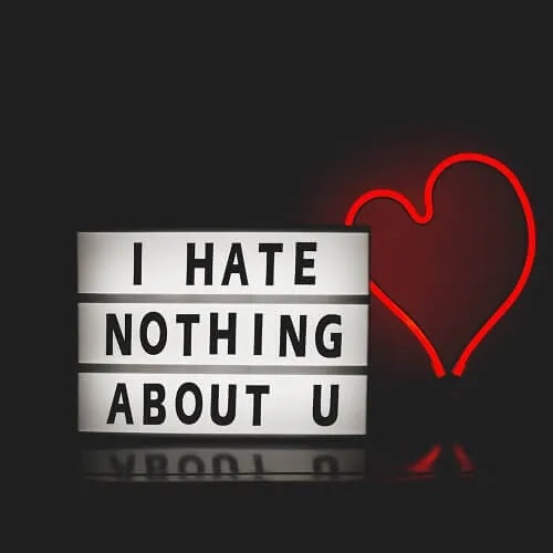 i hate nothing about you DP for boys