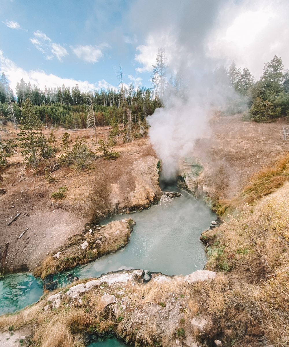 Amanda's OK Guide to Yellowstone