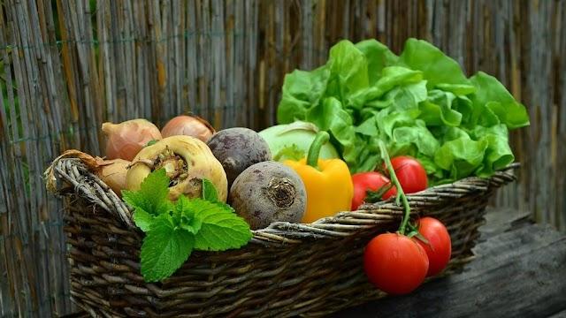 Vegyszermentes zöldségtermesztési megoldások kidolgozására nyert támogatást a Zöldségmag Kft.