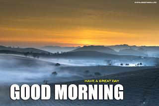 Good Morning Greetings on tea plantation landscape Photo