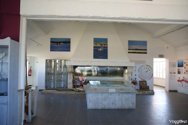 Il piccolo Museo del Sale alle Saline di Aigues Mortes