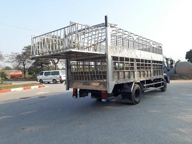 Thùng xe Hyundai Ex8 gắn bửng nâng hạ chở gia súc