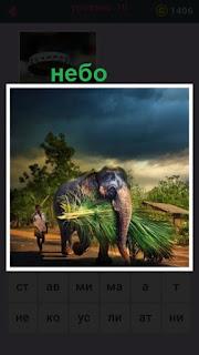 по дороге идет слон с  погонщиком и все небо в тучах
