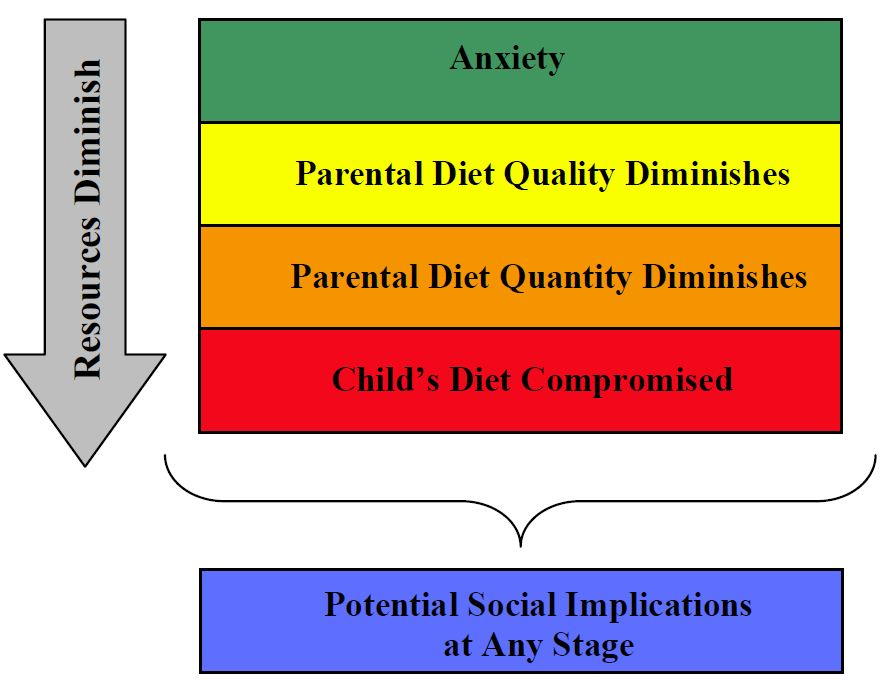basic concepts of food security definition dimensions and  characteristics of household very low food security
