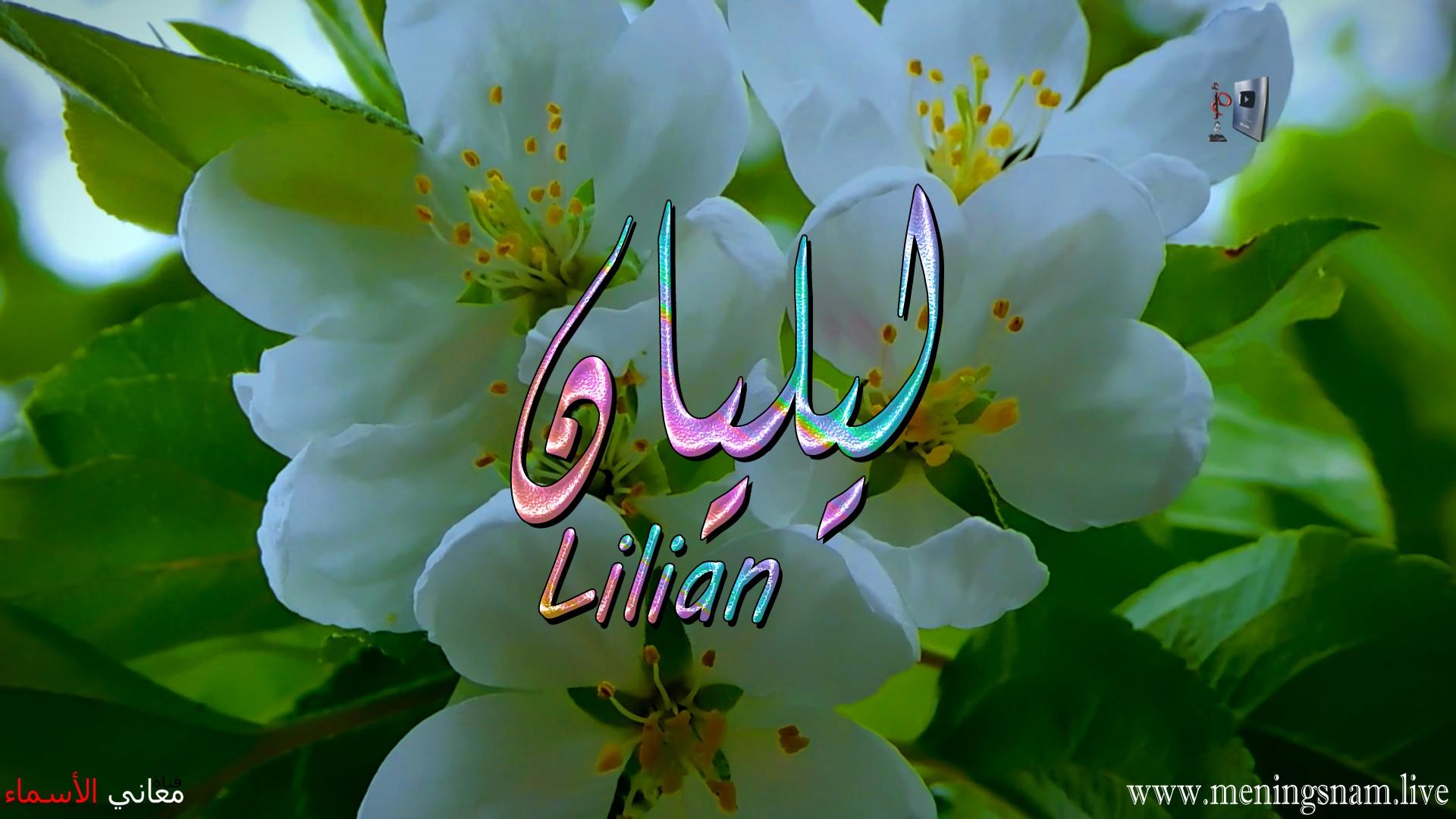 معنى اسم ليليان وصفات حاملة هذا الاسم Lilian