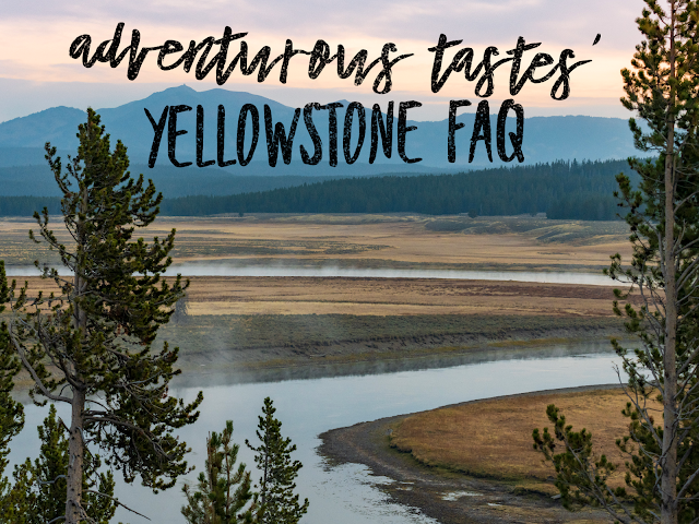 Adventurous Tastes | Yellowstone FAQ over a mountain and river view