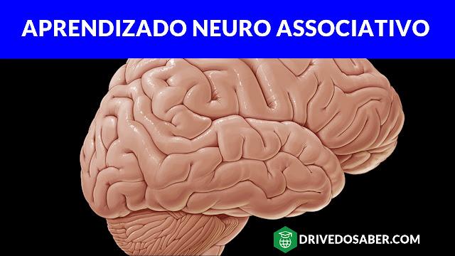 Curso Aprendizado Neuro Associativo
