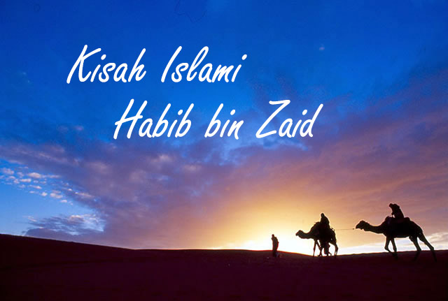 Kisah Islami, Keteguhan Hati Habib bin Zaid