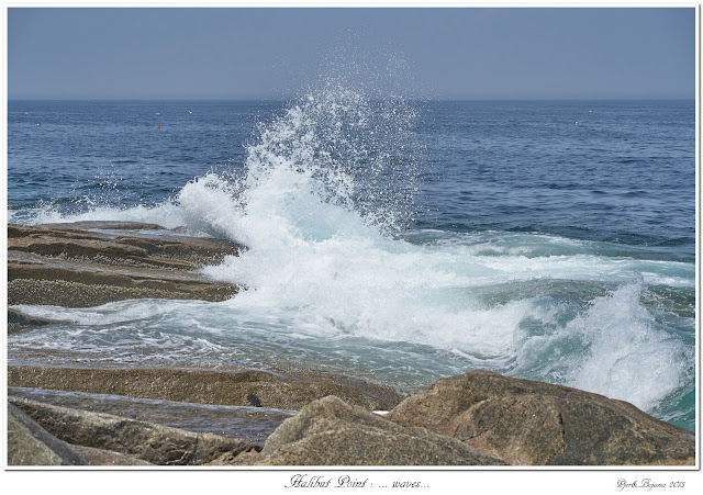 Halibut Point: ... waves...