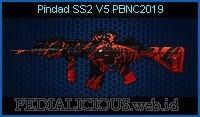 Pindad SS2 V5 PBNC2019