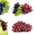 Cara Tepat Menanam Buah Anggur Dalam Pot