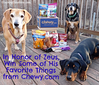 Sophie, Tut & Penny Want You to Celebrate Zeus' Life and Win some of his Favorite Things #CelebrateLife #InHonorofZeus #doggiveaway #Chewy #LapdogCreations #dogbirthday ©LapdogCreations