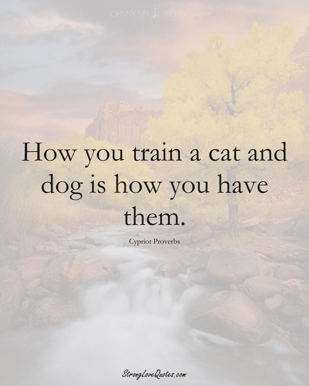 How you train a cat and dog is how you have them. (Cypriot Sayings);  #MiddleEasternSayings