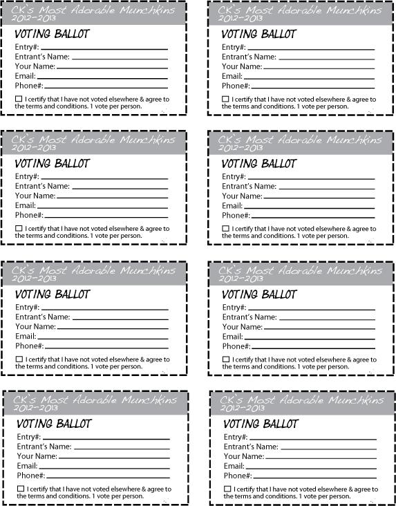 prize ballot template