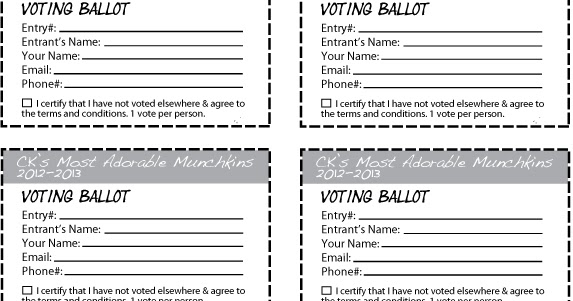 Giveaway Form Template - Giveaway Party