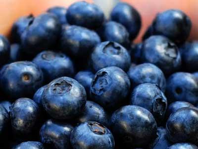 manfaat blueberry untuk mencegah kelenjar getah bening