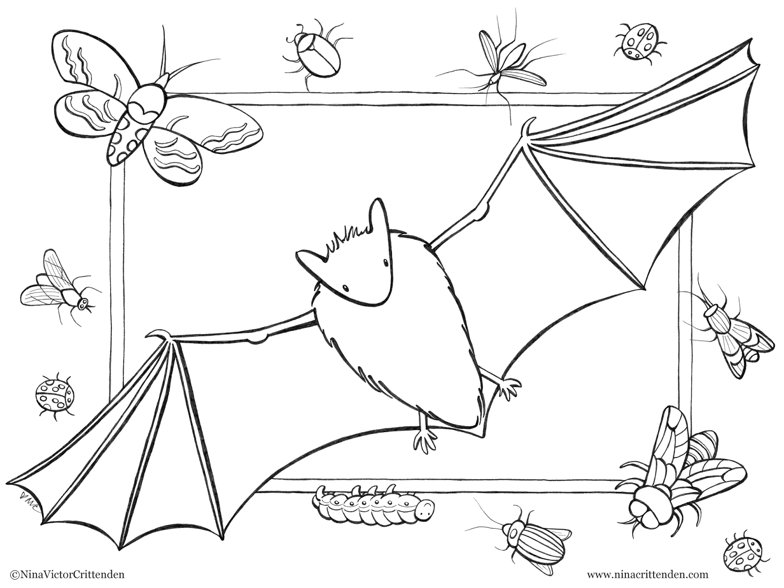 cute bats coloring pages bats are so darn cute and it